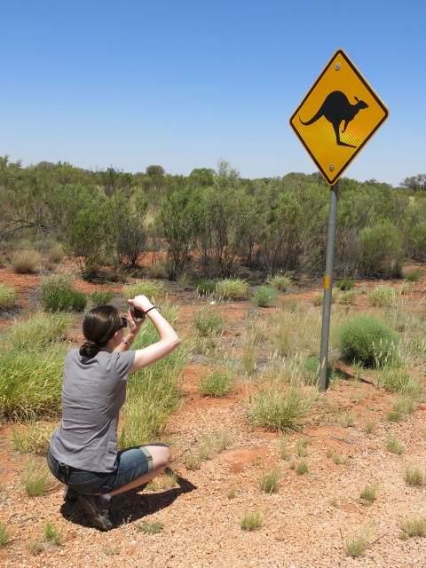 zzz_kangaroocrossing_megan2